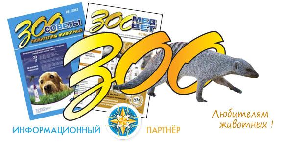 adv-infs-zoomedvet-600
