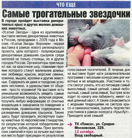 Комсомольская правда (КП). Октябрь 2013 г.3