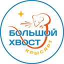 Крысарт