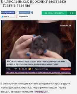 Телеканал «Москва 24» о выставке