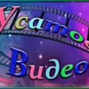 Шестой конкурс «Усатое Видео»