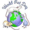 4 апреля — Всемирный день крыс!