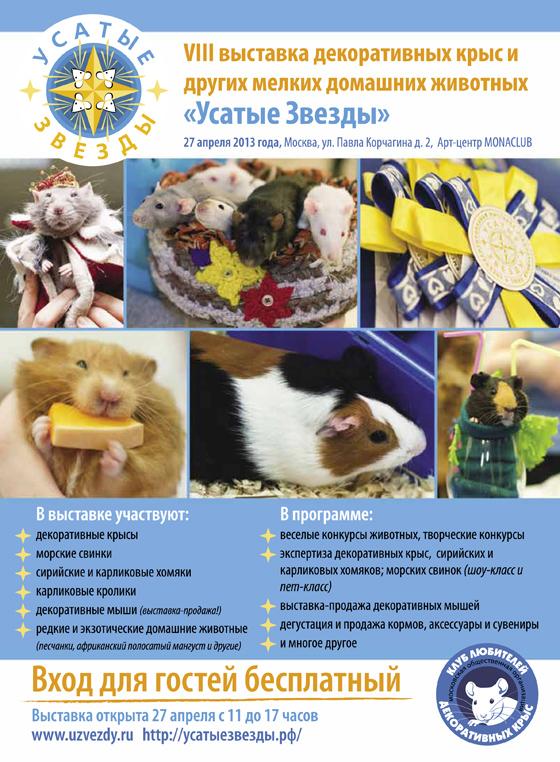 Реклама VIII выставки в СМИ (модули и информация)