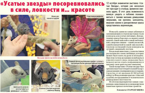 Городская жизнь. Информационное агентство Галерея Чижова. Репортаж в газете, октябрь 2013