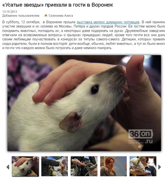 Vor-36on-report-2