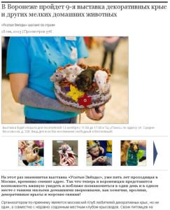 Городская жизнь. Информационное агентство Галерея Чижова. Анонс октябрь 2013