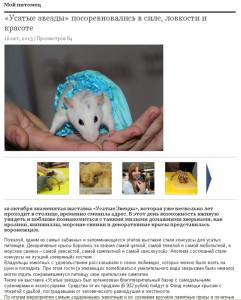 Городская жизнь. Информационное агентство Галерея Чижова. Репортаж на сайте, октябрь 2013