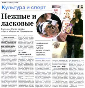 Воронежский курьер. Репортаж с выставки, октябрь 2013
