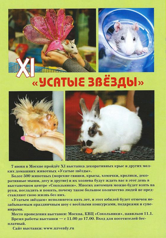 Журналы Свирель, Свирелька, Лазурь. УЗ-XI