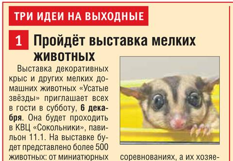 """Газета """"Восточный округ"""", УЗ-XII"""