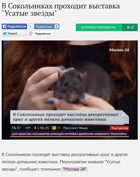 TV-24-13