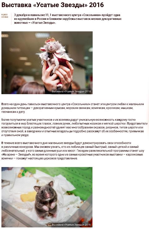 Kuda Moscow о выставке УЗ-XVII